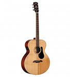 Alvarez Acoustic Guitar, Baritone Acoustic Electric
