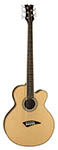 Dean Acoustic Electric Bass 5 String